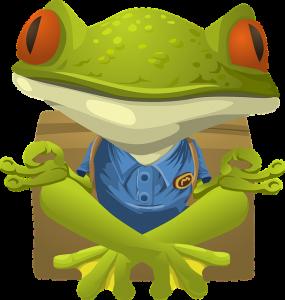 Frog-285x300